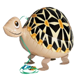 Air Walker Tortoise